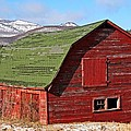 Heather Allen - Adirondack Barn