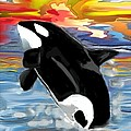 Melissa Nankervis - An Orca celebrating the...