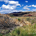 FLJohnson Photography - At John Day Fossil Beds...