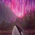 Karen Whitworth - Aurora Orca