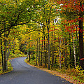 Donna Doherty - Autumn Backroads in New...