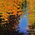 Jeff Breiman - Autumn Impression