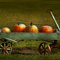 Mike Savad - Autumn - Pumpkins - Free...