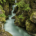 Thomas Schoeller - Avalanche Creek -...