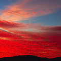 Eugenia Rey-Guerra  - Awesome red sky sunset