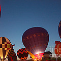 Gary Gingrich Galleries - Balloon-Glow-7808