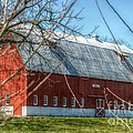 Peggy  Franz - Barn Beautiful