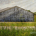 Luther  Fine Art - Barn -  Finding A Iowa...