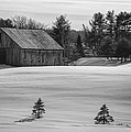 Donna Doherty - Barn in Snow in Black...