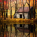 Debra and Dave Vanderlaan - Barn in the Woods