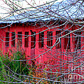 Diana Sainz - Barn of Red by Diana...