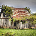 Tony  Colvin - Barn with Character