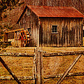 Pamela Phelps - Barn with...