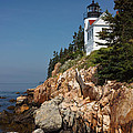 Tim Devine - Bass Harbor Head Light