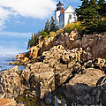 Jerry Fornarotto - Bass Harbor Lighthouse
