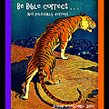 Joseph Coulombe - Be Bible Correct