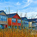 Kathy Baccari - Beach Homes