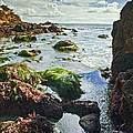 Jerry Cowart - Beach Tide Pool And Blue...