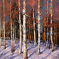 Mark Kremer - Birches