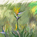 Angela A Stanton - Bird of Paradise Plant