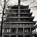 Bill Cannon - Black and White Pagoda -...