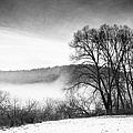 Matthias Hauser - Black and white winter...