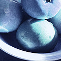 Ginny Schmidt - Bleu Fruits