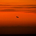 Denise Dube - Blimp at Dusk