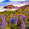 Bob Johnston - Blue Bonnets on Oregon...