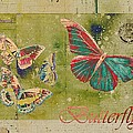 Variance Collections - Blue Butterfly Etc -...
