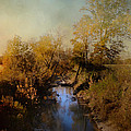 Jai Johnson - Blue Creek In Autumn