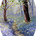 Meaghan Troup - Bluebell Wood