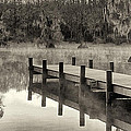 Mary Lee Dereske - Boat Dock Caddo Lake
