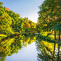 Sylvia J Zarco - Boston flows Green with...
