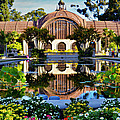 Craig Carter - Botanical Building 2