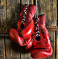 Paul Ward - Boxing Gloves - Now...