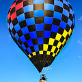 Robert Bales - Bright Checkered Hot Air...