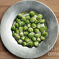 Maria Bobrova - Brussel Sprout