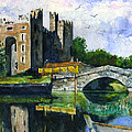 John D Benson - Bunratty Castle portrait