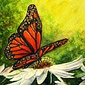 Hazel Holland - Butterfly and Daisy