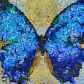 Variance Collections - Butterfly Art - d11bb