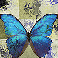 Variance Collections - Butterfly Art - s02b