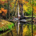 Greg Mimbs - Butternut Creek in Fall