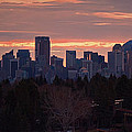 Laura Bentley - Calgary Alberta Winter...