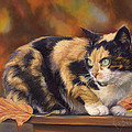 Lucie Bilodeau - Calico In The Fall
