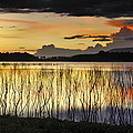 Guido Montanes Castillo - Calm sunset at the lake...