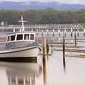 Kevin Chippindall - Calm Waters Forster NSW...