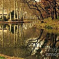 France  Art - Canal Reflections