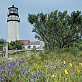 John Haldane - Cape Cod Lighthouse