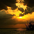 Kandy Hurley - Captiva Island Ends the...